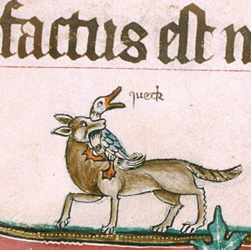 @TheMERL @britishmuseum Fourteenth-century duck in the Gorleston Psalter reacts exactly as you would expect.