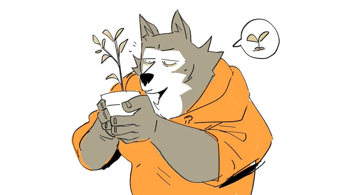 He likes plants