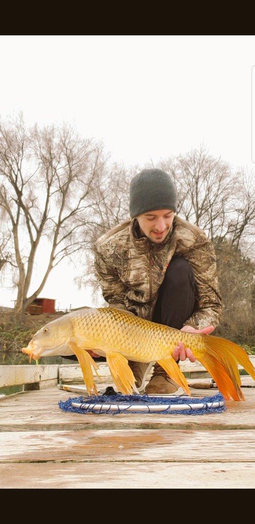 https://t.co/nz416tQgg3  #carp<b>Fish</b>ing #butterflycarp #<b>Fish</b>ingforfun #<b>Fish</b>ing #p