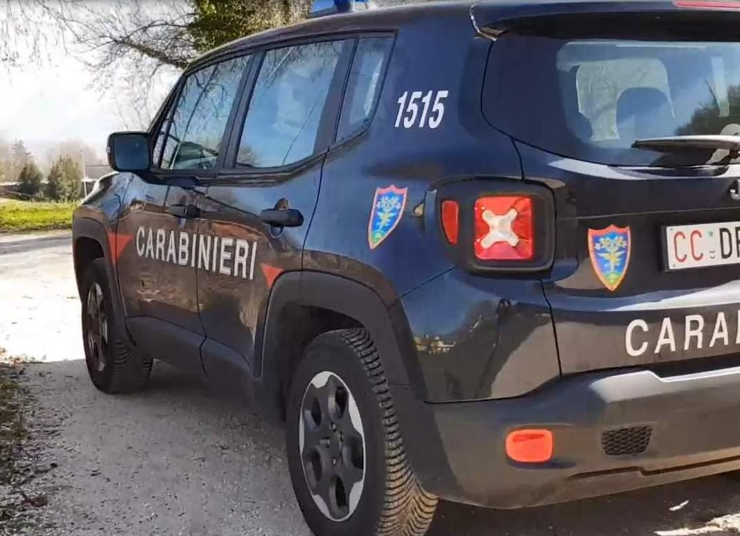 test Twitter Media - Controlli dei #forestali a #Monteforte e #Arciano (#Baiano)  LEGGI I PARTICOLARI  https://t.co/sMhNUixRMn https://t.co/uPSTlU8Bmk