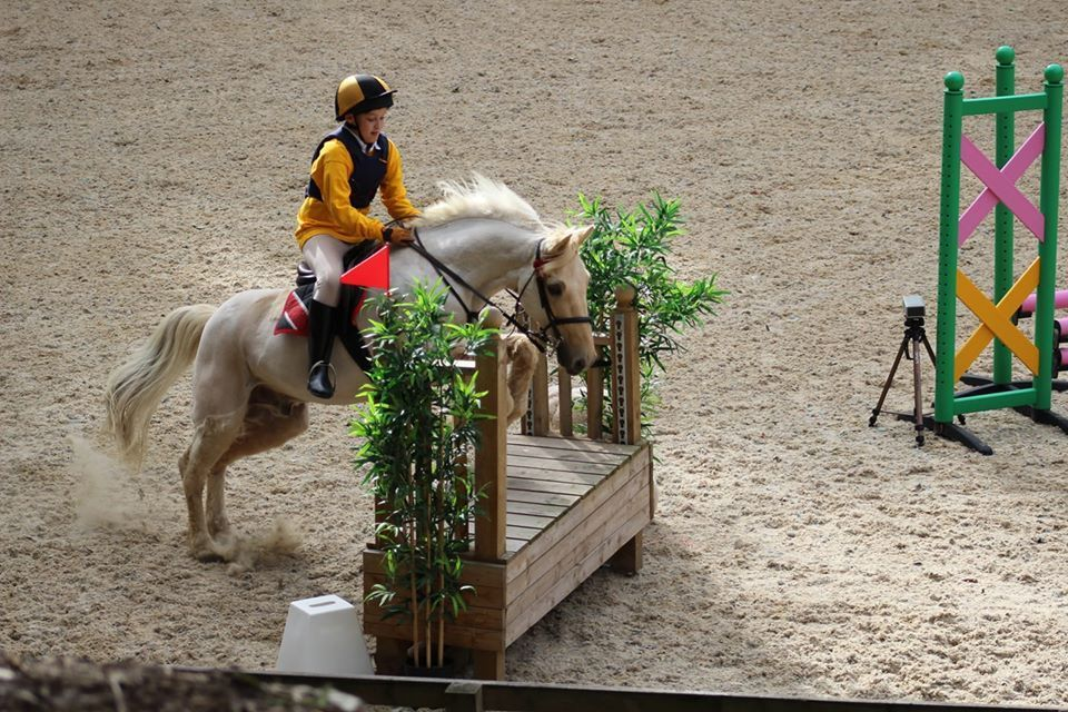 test Twitter Media - My 11 year old is #Type1 and was diagnosed about 1 month before coming 2nd riding his pony. I'm a very proud mum!  📷 Naomi https://t.co/V8eeJkDtU7