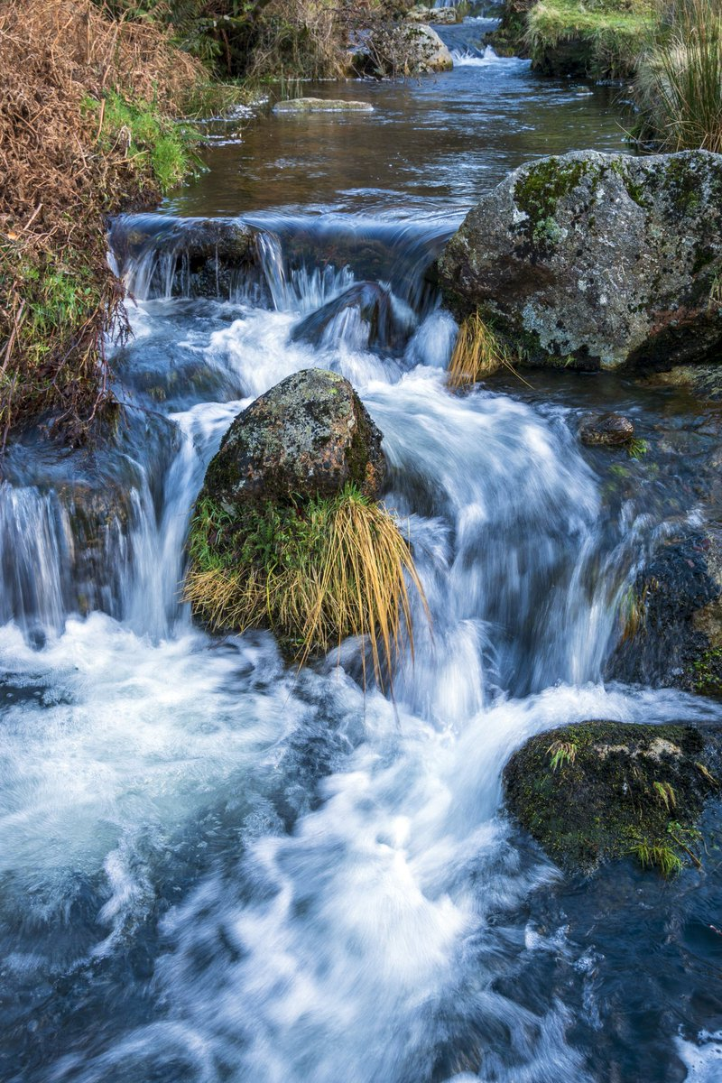 test Twitter Media - The Babbling Brook. Fresh rain water makes its way into a small tributary of the River Erme before eventually joining the sea. The water looks cold... It is.  #Dartmoor #Ivybridge #River #Stream #Rain #Nature #Photography https://t.co/tmSVkbWdFD