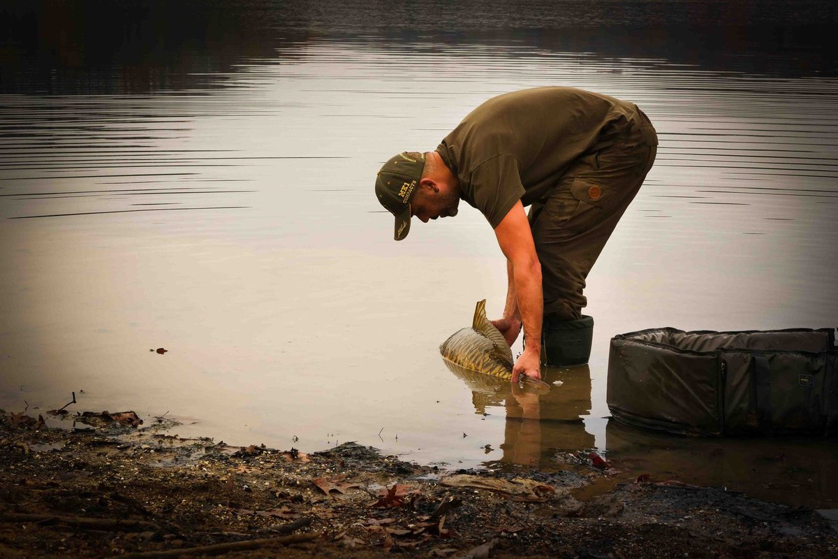 Catch and Release ! #carpenokill #CarpFishing https://t.co/jfxLv62g6O