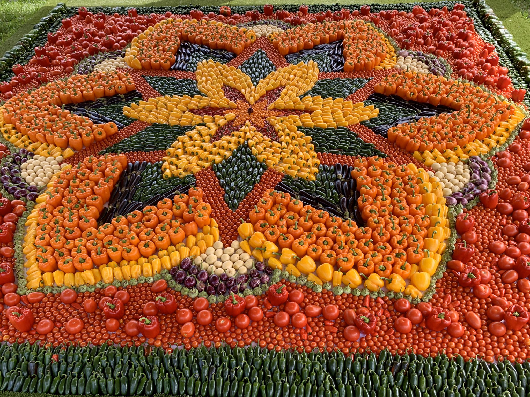 Another great #TomatoFestivalSydney and my last Mandala design for the festival.  The @RBGSydney Horticulture staff did an amazing job interpreting my coloured drawing into a masterpiece. Food is Art!  Was a bit tough this year as tomatoes are in shortage. #Solanaceae https://t.co/INaeob1iGx