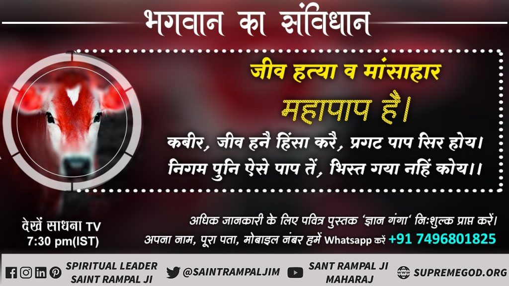 #TrueGuru_SantRampalJi Animals are raised and killed for leather, don't do such brutality to them. So one should not never wear leather, stop cruelty towards animals. #SaturdayMotivation