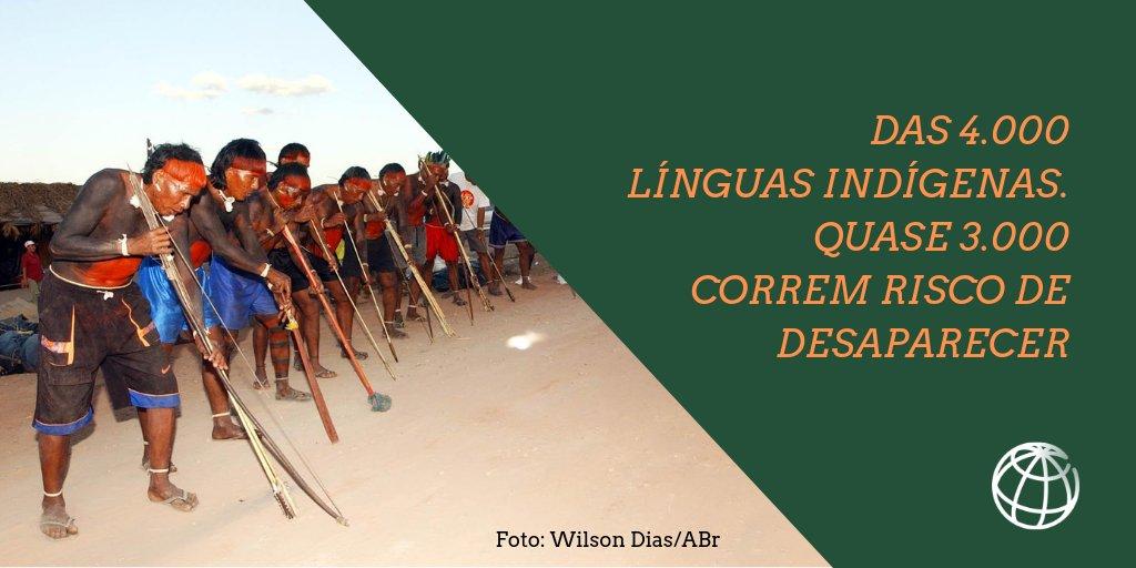 Com o desaparecimento das línguas indígenas em todo o mundo, também morrem culturas e modos sustentáveis de convivência com a natureza. Saiba mais:  #SomosIndígenas
