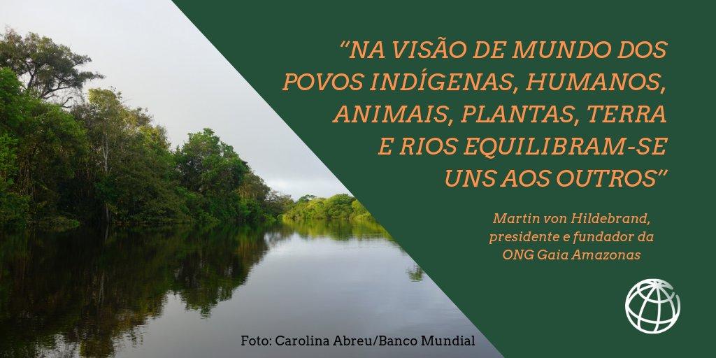 Uma das iniciativas que contribuem para fortalecer as comunidades #indígenas é o programa Paisagens Sustentáveis da #Amazônia (ASL), financiado pelo @theGEF e liderado pelo @BancoMundial. Outras informações: