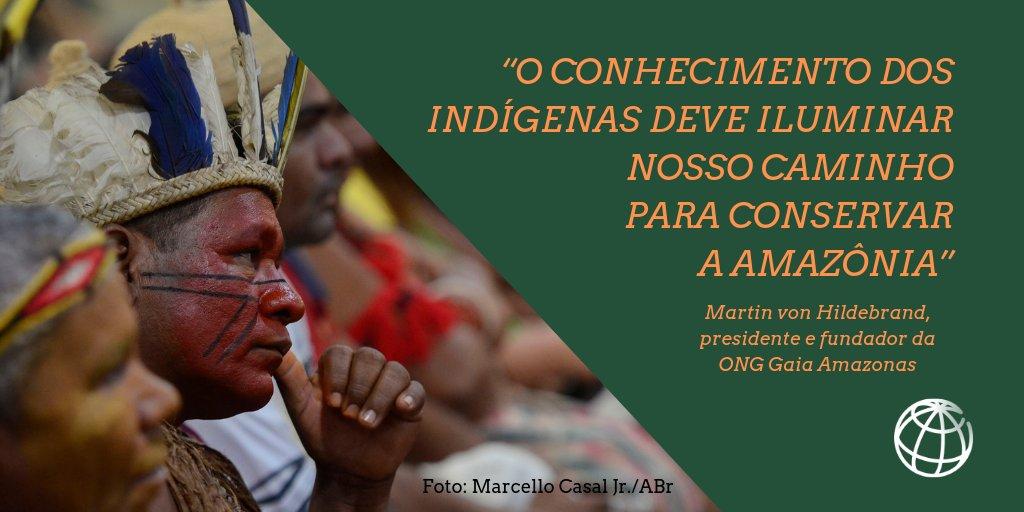 Na #Amazônia, tudo está conectado: plantas, animais, água e humanos. E as línguas #indígenas expressam perfeitamente essa ligação! Leia a entrevista com o presidente da @gaiaamazonas para saber mais: