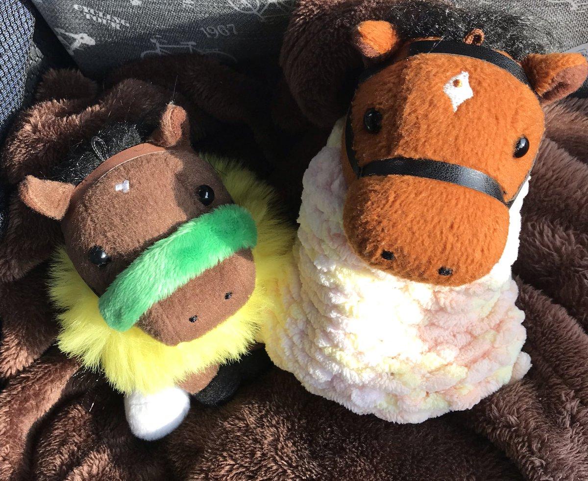 test ツイッターメディア - 今日のおともは 「今週末もサトノの応援よろしくね」なサトノダイヤモンド と、 「妹が出走します🐎応援よろしくね」なブラストワンピース (馬体重ヒ・ミ・ツ)です。  今日はぽかぽか天気が良くて眠いです_(:3 」∠ )_ https://t.co/pQs6Web3qy