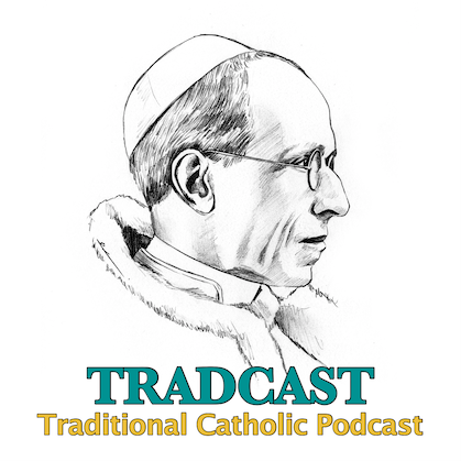 "Just released! In the new TRADCAST EXPRESS 103 we take a critical look at #QueridaAmazonia, specifically Chapter 1: ""A Social Dream"" -  If you can't stand Vatican II drivel, this podcast is for you! #catholic #popefrancis #vatican #CatholicTwitter"