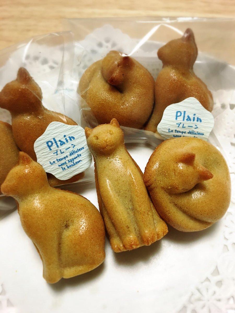 test ツイッターメディア - @SHARP_JP お力お借りします!  【お菓子屋ニャンライズ】 猫の形のクッキーやフィナンシェなどの焼き菓子を製造販売しています。  出店予定だったイベントが次々中止になりました…。 https://t.co/76tj2YS7SU ネット通販もしています! よろしくお願い致します。 https://t.co/6kbsG0JbH6