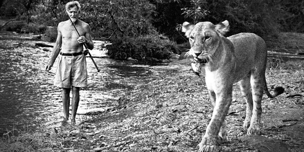 Reason 48 to visit Africa. To visit Meru National Park in Kenya, the place that gave the world Elsa, the lioness whose story in the 1960s inspired thousands of people to become involved in wildlife conservation. #Africa #adventure #Kenya https://t.co/VN9Tfyv1Rw