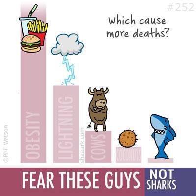 Tag a friend who fears #sharks (via @sharktoons) 💙🦈