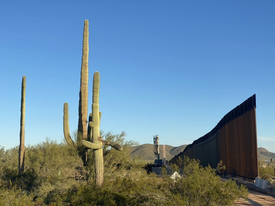Laiken Jordahl, borderlands campaigner for the Center, photographed these two beautiful, ancient saguaros in an embrace two days ago. They were gone the next day — torn apart and plowed over for Trump's #BorderWall
