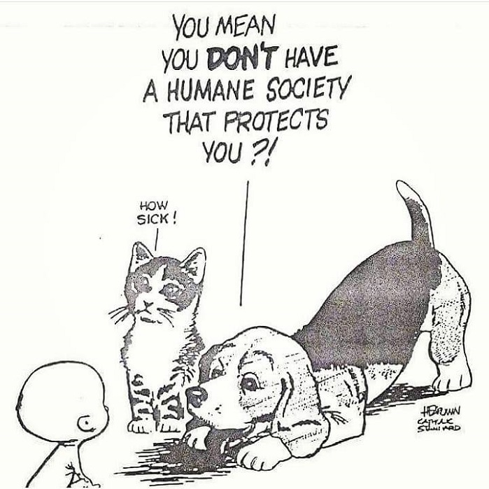 We need a Humane Society that protects babies from abortion.  #NationalPetDay #LoveYourPetsDay