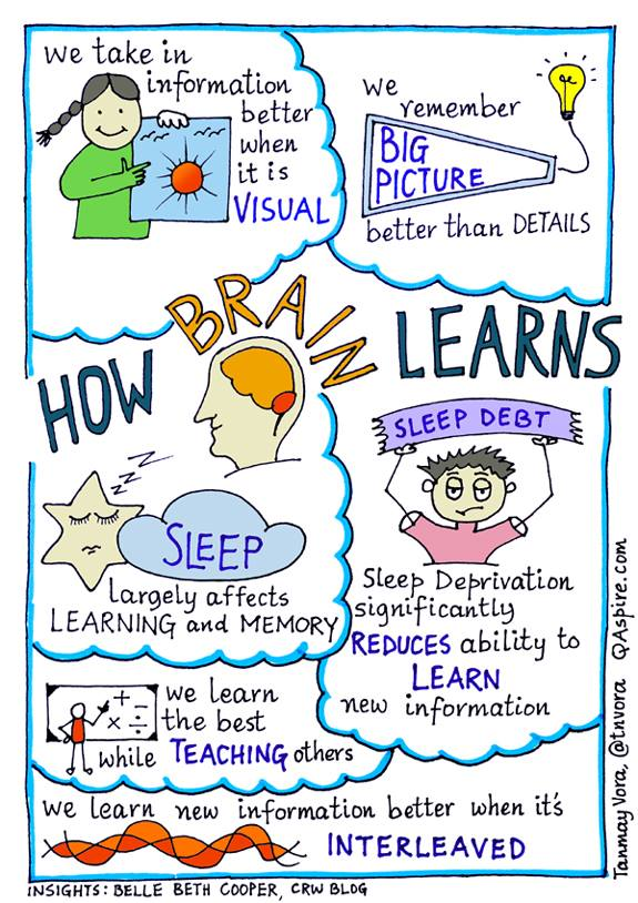 While everyone learns slightly differently, there are some similarities in the way our brains take in new information.  #Sketchnote via @tnvora thoughts by @BelleBCooper https://t.co/uwaAQT1XAr