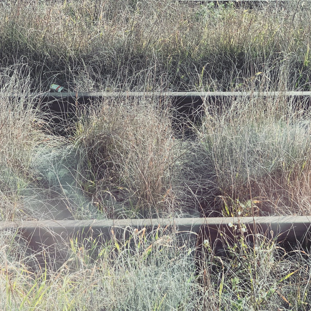 Abandoned rail track #windowseat #solitary #photography
