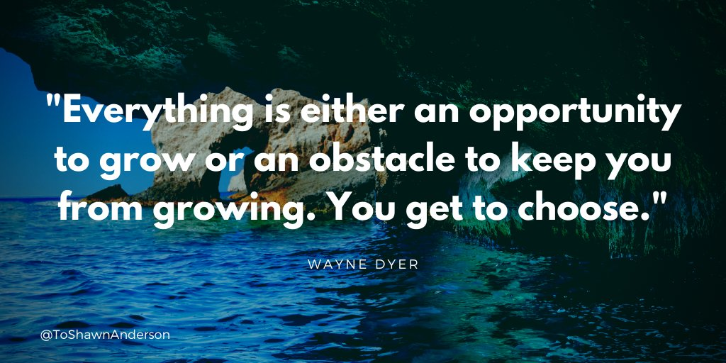 Everything is either an opportunity to grow or an obstacle to keep you from growing. You get to choose.  #ThinkBigSundayWithMarsha #motivation #defstar5  #IAM #quote #gratitude #positivity #grateful #courage #Extramile