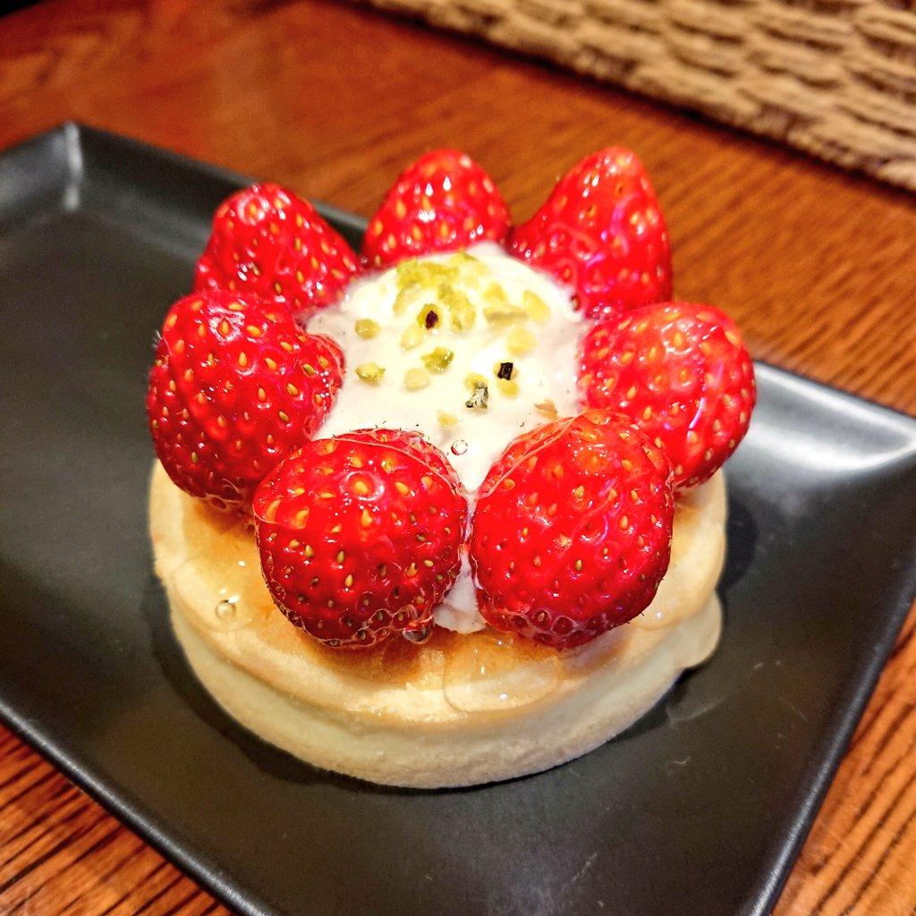 test ツイッターメディア - 今日は案内人のみとちゃんに、ずんちゃんと一緒に美味しいケーキ屋さんへ連れてってもらった🍰✨ パンもケーキも美味しくて、お土産用のラスクもしっかり買ってしまった…🤦♀️💕パティシエさんが本場おフランスの方で、サンタさんみたい(語彙力)なおっきいおじさんで終始可愛かった👨🍳♥️🎅 https://t.co/WkbhqRSjRn