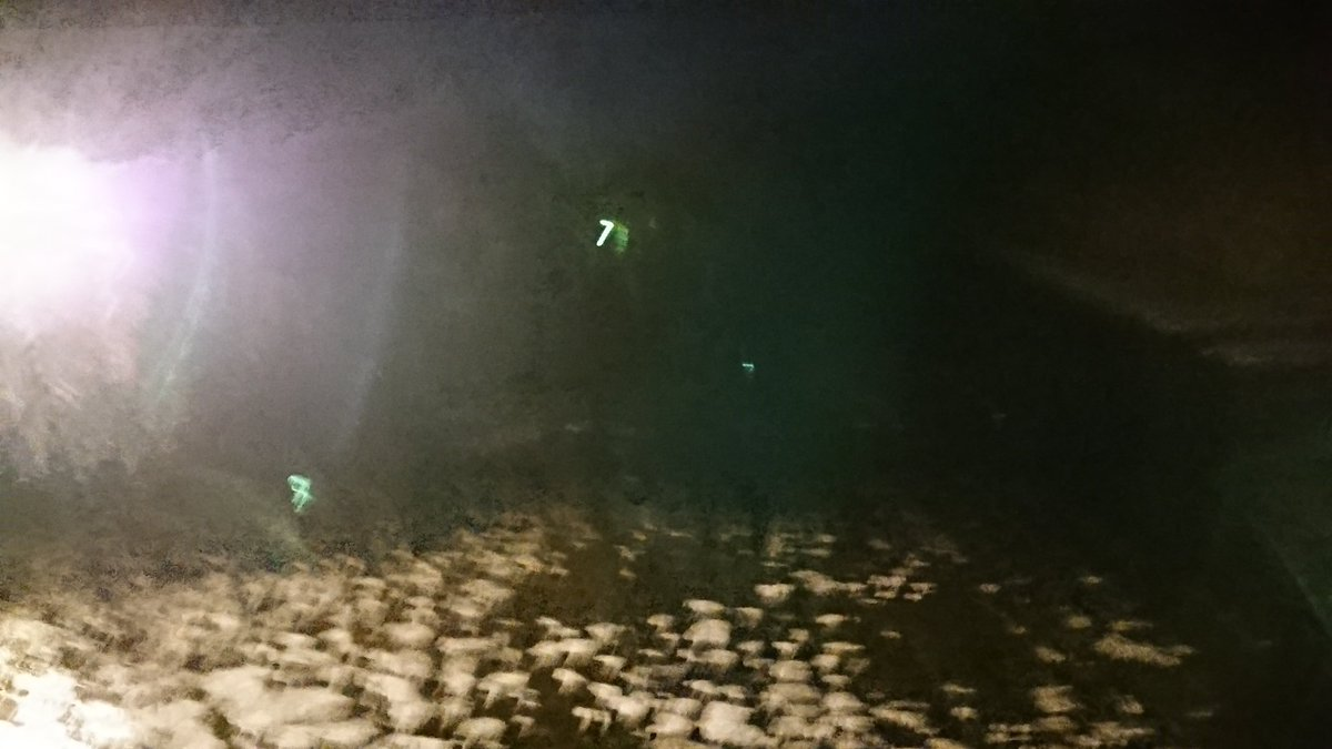 test ツイッターメディア - #スマホの中で一番映えない画像を晒せ 暗い&手振れがひどすぎる&分かりやすい物がない 伊勢神宮内の五十鈴川です… https://t.co/MCRcHCQHyZ