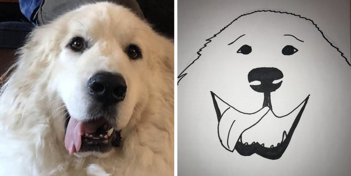 Humane Society will give you a bad custom drawing of your pet for a  donation