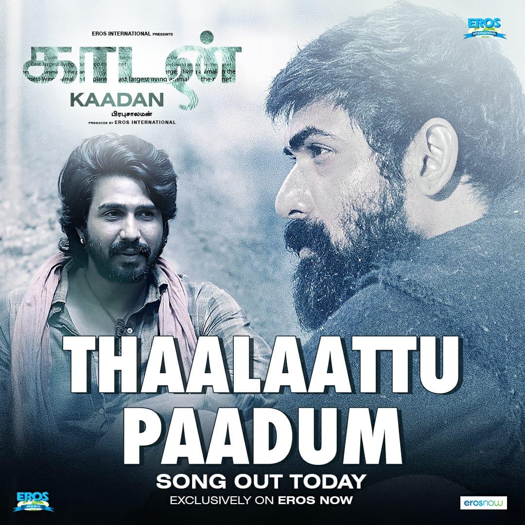The first song from the album of #Kaadan drops today. Watch out for #ThaalaattuPaadum this evening.   @TheVishnuVishal @RanaDaggubati #PrabuSolomon @zyhssn @ShriyaP @ErosIntlPlc #SaveTheForest