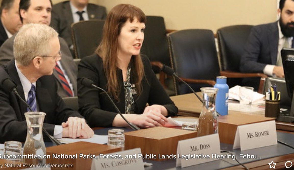 Today I testified on behalf of @Surfrider before the House Natural Resources subcomittee on National Parks, Forests, and Public Lands in support of @RepMikeQuigley's bill regarding single-use plastic water bottles in National Parks. #plastic #surfriderhillday  #Congress