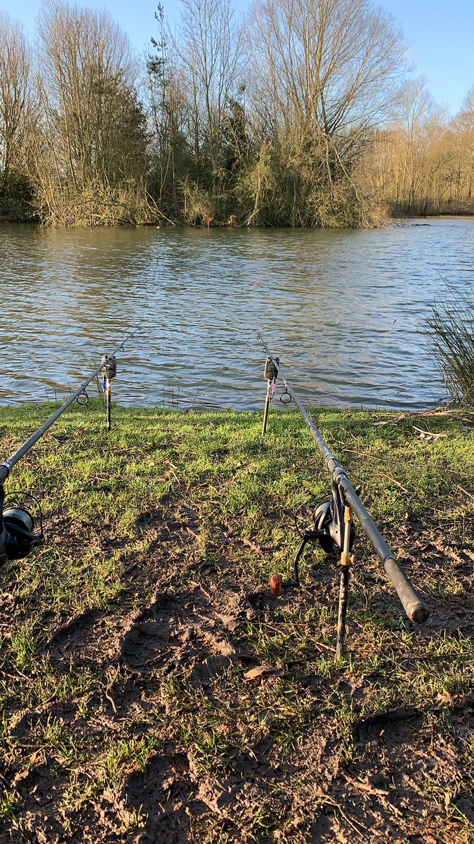 Had to get the lines wet today. What a gorgeous morning! #carpfishing #carp  #fishing https://t.co/9