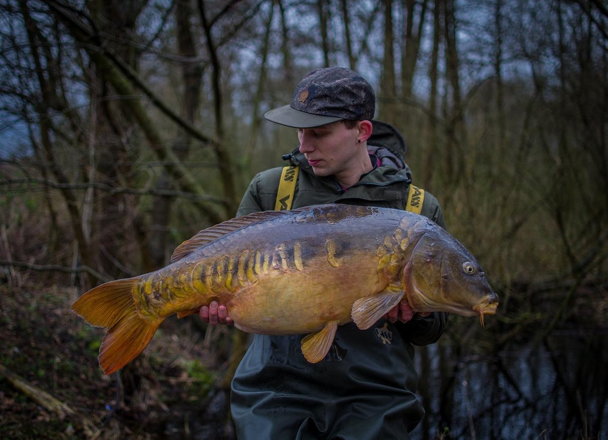 Perfect Mirror. #carpfishing #vasswaders  Photo Rick Oomen https://t.co/lbT6C7eWAv