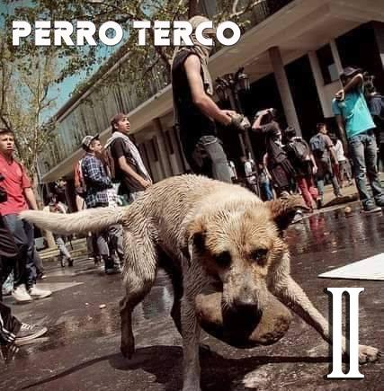 """test Twitter Media - """"Rock crudo y directo""""💪, eso es lo que trae la banda chilena Perro Terco en su nueva producción titulada """"II""""💿. El cuarteto confirmó lo que venía mostrando en sus singles promocionales y publicó este EP con una propuesta rockera y descarnada 🎶🔥 -> https://t.co/Sjjdc5jyWX https://t.co/66j0iuPne8"""