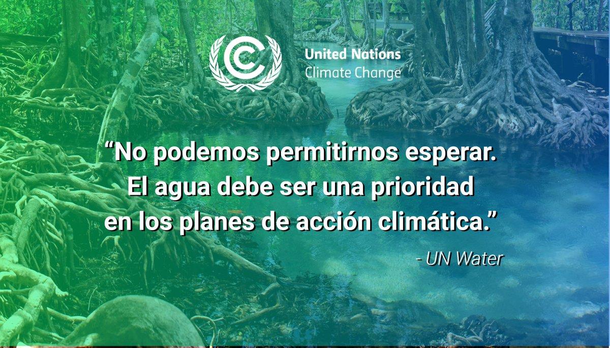 El #agua es un recurso vital frente al #CambioClimático  💧Los humedales captan CO2 💧La vegetación previene las crecidas y la erosión 💧Captación de agua pluvial frente a la sequía 💧Reutilización de aguas residuales 💧Agricultura climáticamente inteligente  #DíaMundialDelAgua