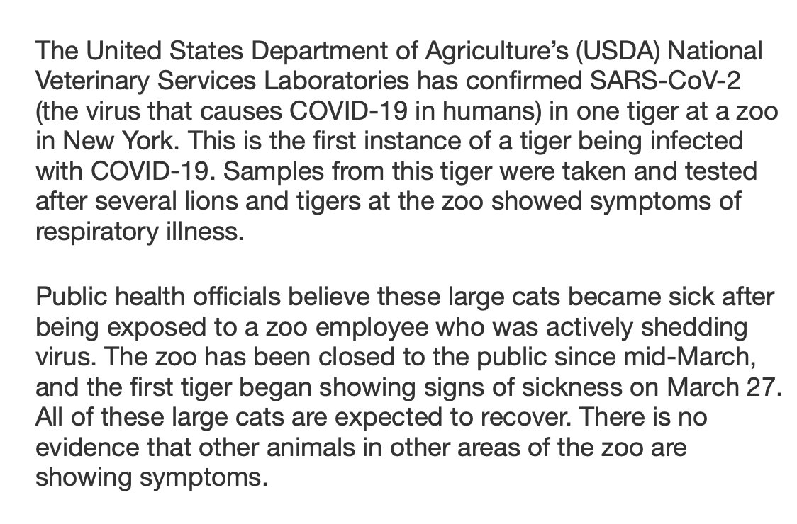 Terrible  The US Department of Agriculture has confirmed that a tiger at the Bronx Zoo has tested positive for the coronavirus  We know that non-human primates can contract the coronavirus and I've been concerned for gorillas getting it  Full Statement: