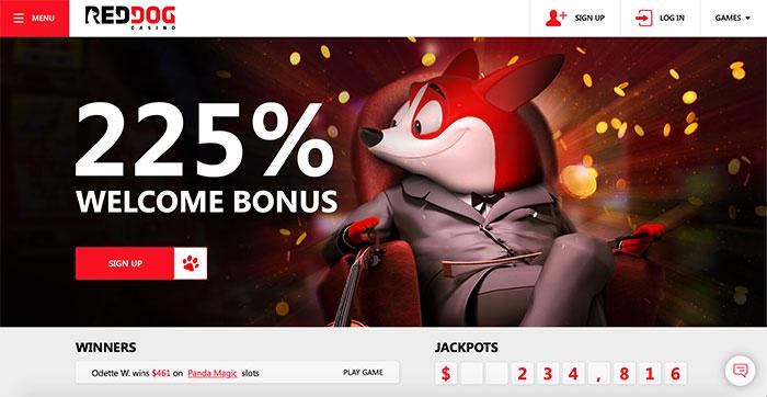 🐕Sign up at #RedDogCasino to add a 220% Match Bonus!   🎰🐕 #bitcoin #btc #slots #casinogames #playcasino#casinotalk #pokies #uscasino #vegas #casino #onlinecasino #slot