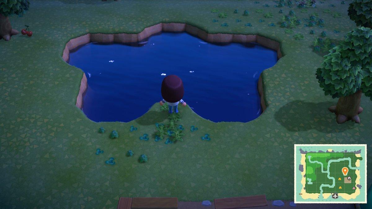 test ツイッターメディア - 星型の池がある島にした! どうぶつの森シリーズ初プレイです  #どうぶつの森 #AnimalCrossing #ACNH #NintendoSwitch https://t.co/6sih3fGSOC