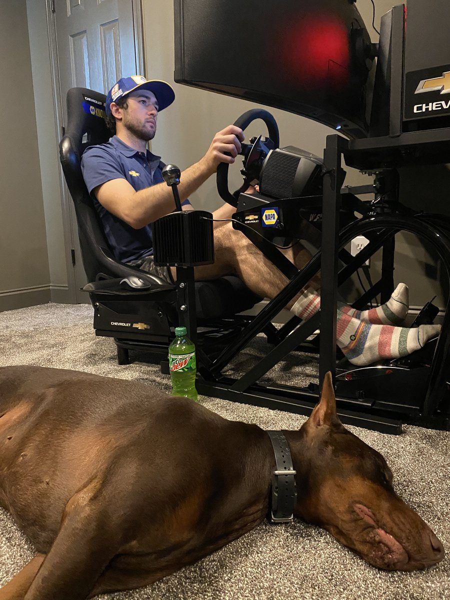 I think Fletch 🐕 gave up on us. We need some tires and we can get back in it. #di9