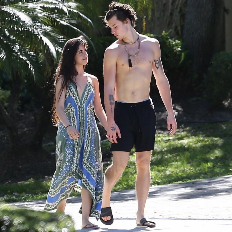 RT @DMLMedia: Shawn and Camila on their daily happy little stroll https://t.co/ehyySLeksk