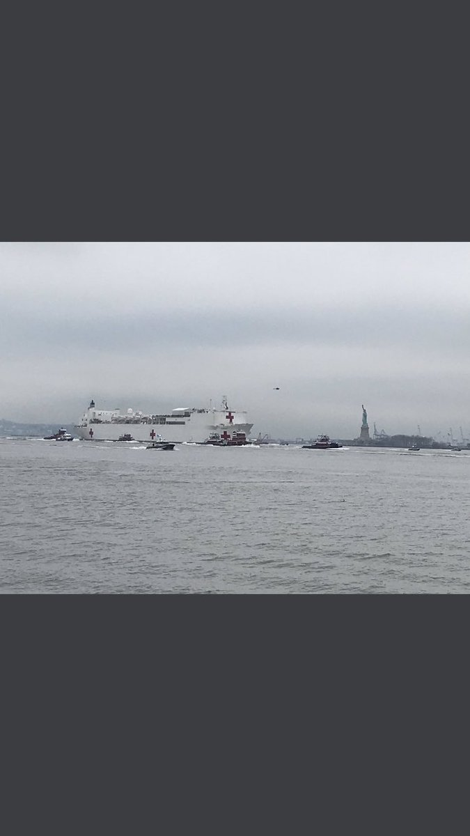 Navy hospital ship passes Statue of Liberty this morning. What a photo by @SethEHarrison @lohud