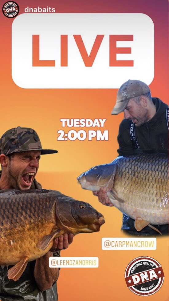 Today at 2pm on @DNABaitsUK Instagram live, Mozza & Crowy talking all things carp fishing 👍 #