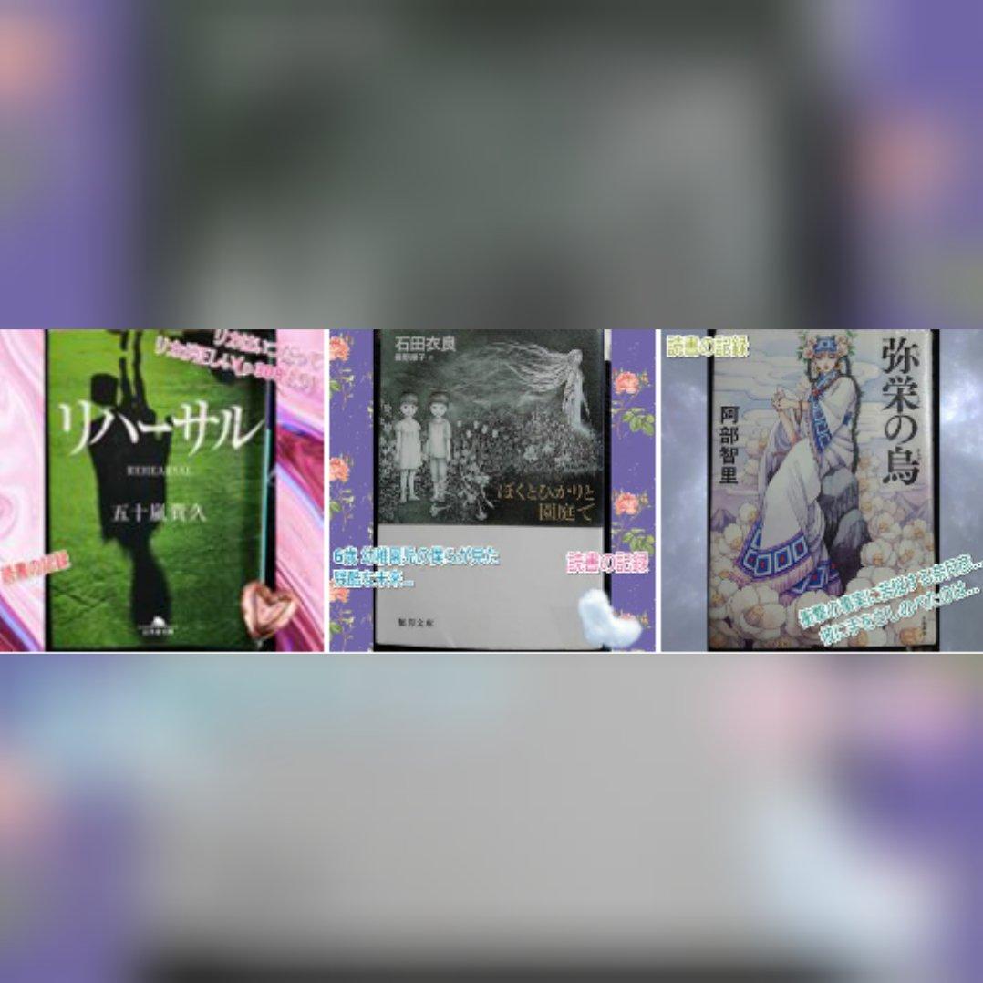 test ツイッターメディア - 眠れぬ真珠 GOSICKシリーズ②、③ リカシリーズ①~④ sex ブライディ家の押しかけ花婿 ぼくとひかりと園庭で  計35冊でした。  石田衣良ワールドに浸かろうと決めていたので、石田衣良作品が多めかなと思いきや大好きな新文芸やラノベで冊数を稼いでます笑 八咫烏シリーズが時間かかったな。  (続く) https://t.co/fdq1i8r7vJ