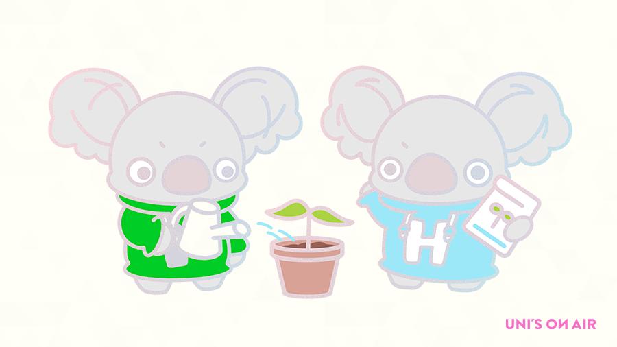 test ツイッターメディア - 🌸ハーフアニバーサリーSNS企画第2弾🌸 〜YELL for BLOOM  欅坂46〜 今度は #欅坂46 の4th Anniversaryに向けて、 きらりひらりが花の準備をしているようです💐 MYRでメンバーに贈られた総エールポイントに応じて、 育てている花が成長していきます✨ #ユニエア #どんな花が咲くのか #Birthflower https://t.co/TDNKUbDhwn