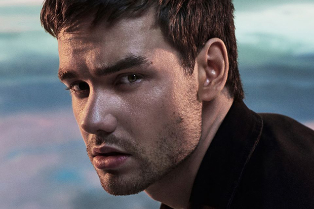 """Brace yourself for a banger. @LiamPayne is teaming up with @Alesso for """"Midnight"""" (out April 8): https://t.co/Mn6CUWacIG https://t.co/JuqSkYhNVC"""