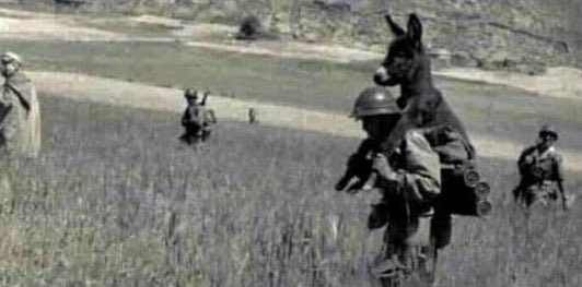 A WWII soldier carrying a donkey. Because the field is mined & if the donkey was free, it would likely detonate a charge & kill everyone. So during difficult times the first ones you have to keep under control are the jackasses who don't understand the danger & do as they please.