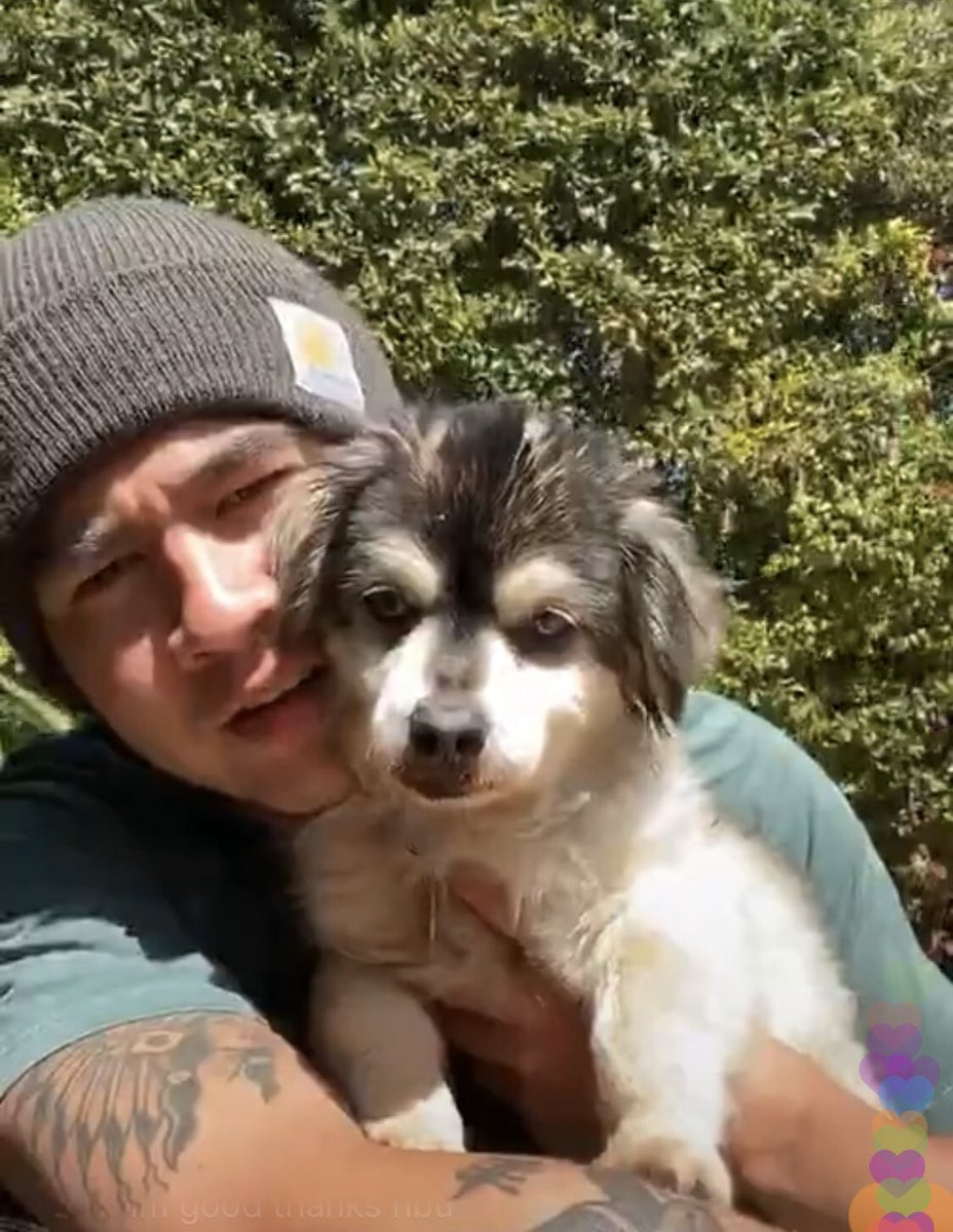 Calum shared on the live stream that he found Duke at a shelter in Van Nuys and they were a perfect match ♥️ he also shared that Duke is just about ten years old