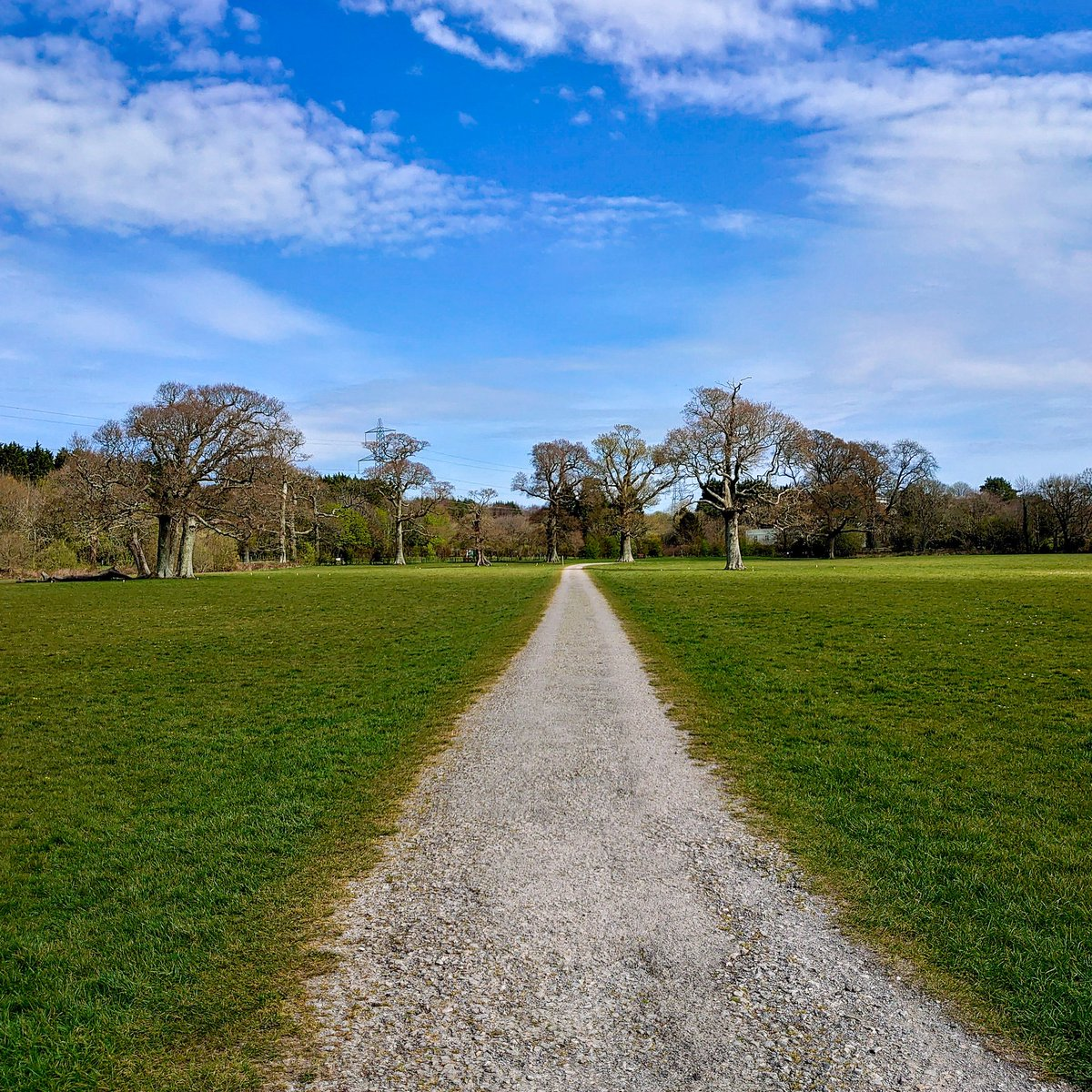 test Twitter Media - Absolutely nobody in Filham Park today. Just the sound of birds chirping and the wind rustling through the trees.  #Ivybridge https://t.co/hpcMSXJERe