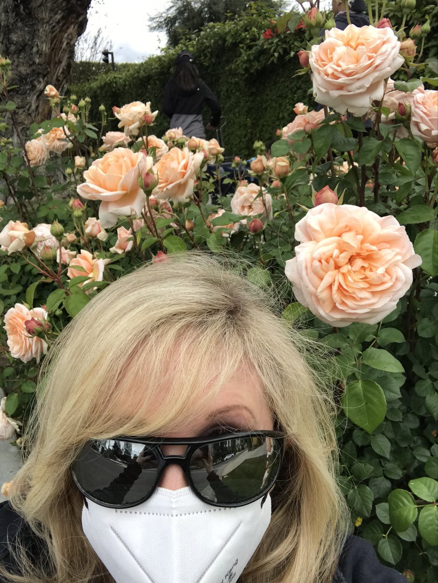 #OnMyWalk Yay! I found an old mask I used for our fires last year, so out to gather flowers pics for you guys! Thank God for my old sunglasses Jimi Hendrix gave me, as they are wraparound! #californialockdown #California #la #lalockdown #lashutdown #FlowersAgainstCovid #Flowers