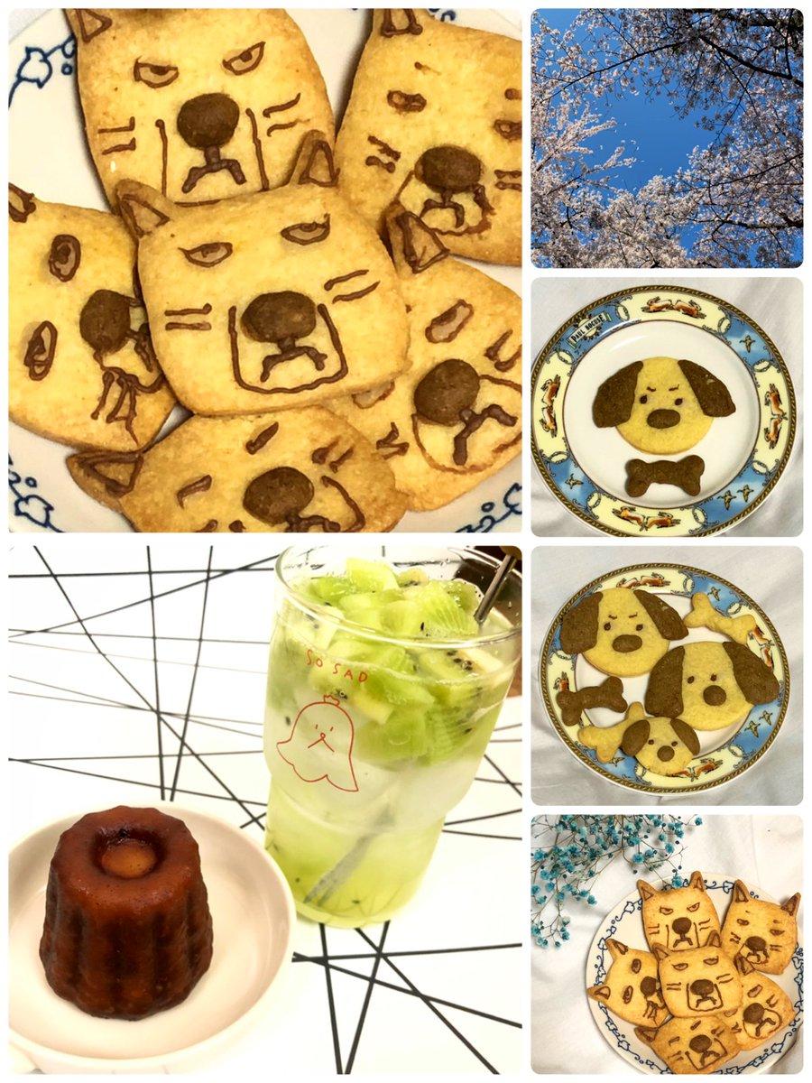 test ツイッターメディア - 娘っちクッキー StayHome🏠 お菓子作り⤴⤴⤴ チベットスナギツネ 表情よっ(笑)🌱 いい香りo(。>ᴗ<。)o︎♬❤︎ 🥝ソーダ💚もあるよ https://t.co/UGpoGlCGMK