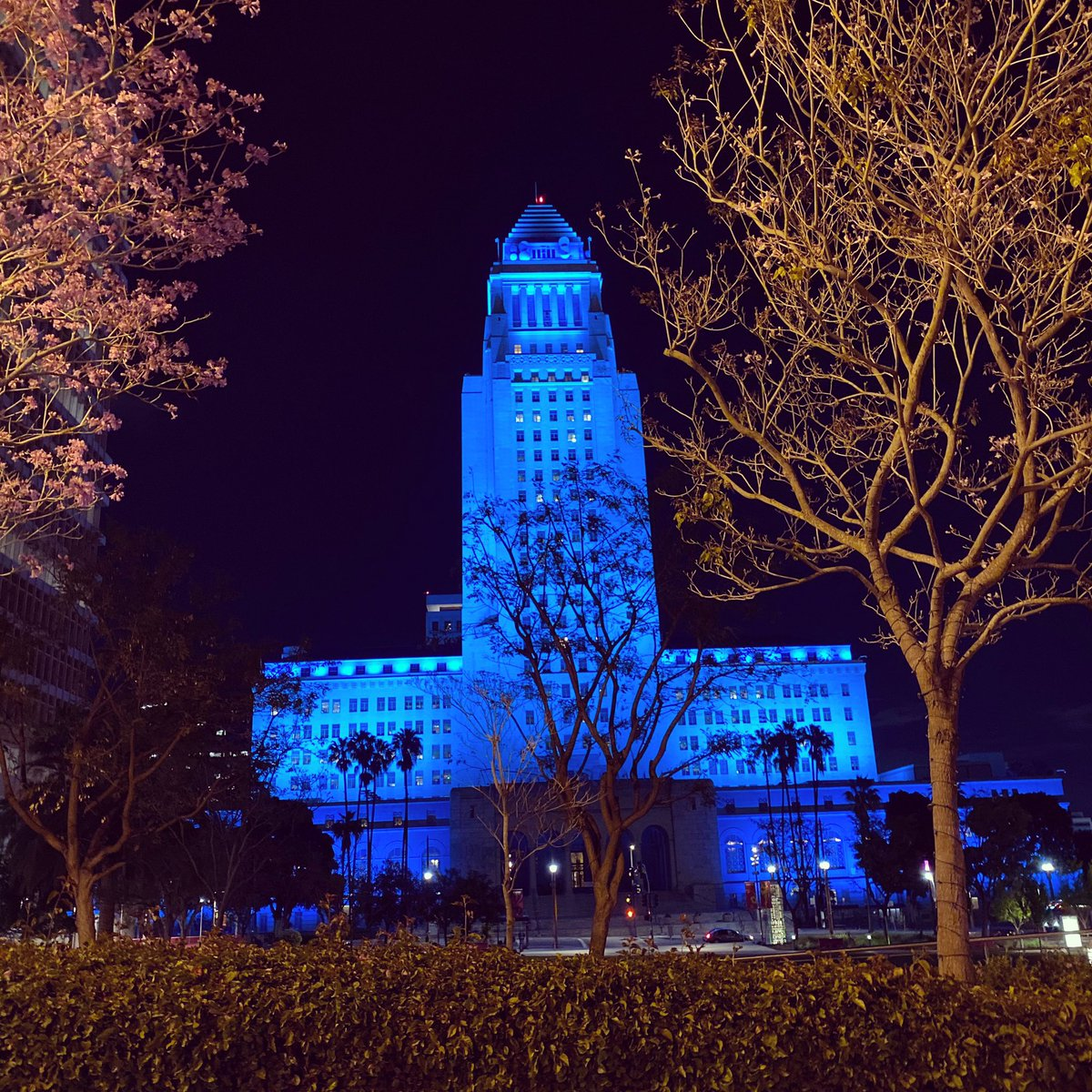 LA City Hall lit in blue to honor ALL those in the medical profession.  You and your families are our American Heroes!  Thank You.