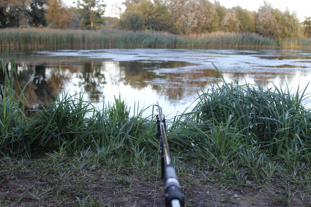 A stalking sesh last year... <b>Blank</b>ed!! 🤣🤣 #CarpFishing #CarpFishingUK #Fishing #Fishing