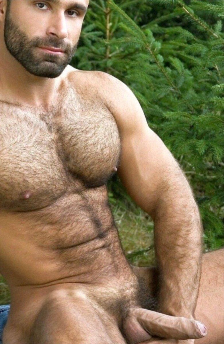 Обнаженные Волосатые Мускулистые Мужчины