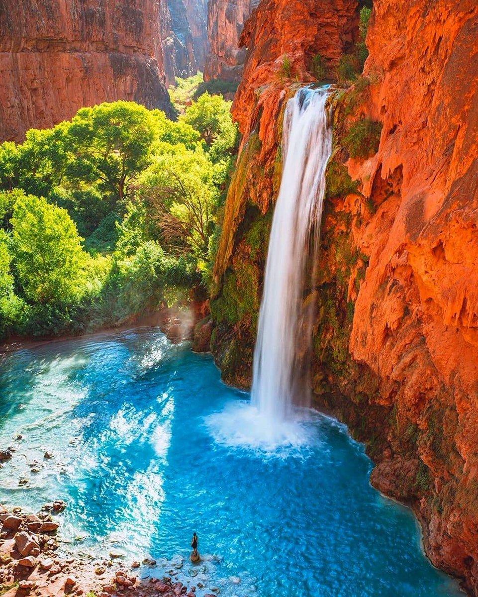 Havasu Falls, Arizona, Estados Unidos 😍 Foto:    #estadosunidos #usa #travel #viajar